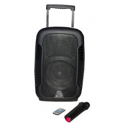 Активная акустическая система BLW 100w