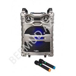 Aktiv dinamik sistemi Piasing DJ15