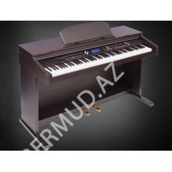 Электронное пианино DP-8820